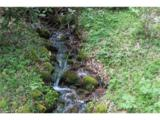 0000 Big Spring Trail - Photo 17