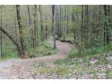 0000 Big Spring Trail - Photo 18