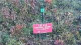 95 Timber Ridge Circle - Photo 3