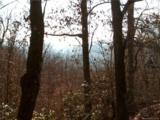 204 Rambling Trail - Photo 4
