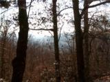 204 Rambling Trail - Photo 5