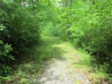 Lot 35 Tamarack Trail - Photo 11