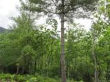 Lot 35 Tamarack Trail - Photo 9