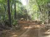 106 Ac Turkey Creek Ridge Road - Photo 2