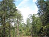 106 Ac Turkey Creek Ridge Road - Photo 3