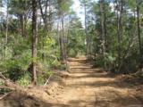 106 Ac Turkey Creek Ridge Road - Photo 4