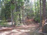 106 Ac Turkey Creek Ridge Road - Photo 5