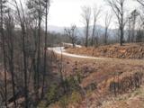 0 Bills Mountain Trail - Photo 5