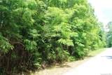 LOT #9 Rambling Trail - Photo 1