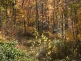 Lot 31 Timucua Trail - Photo 1