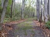 Lots 216 & 217 Apple Creek Acres Road - Photo 1