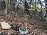 0 Dancing Bear Trail - Photo 5