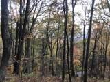 0 Dancing Bear Trail - Photo 6