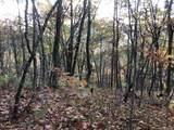 0 Dancing Bear Trail - Photo 8