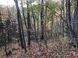 0 Dancing Bear Trail - Photo 9