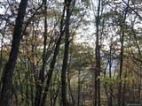 0 Dancing Bear Trail - Photo 10