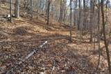 000 Paint Fork Road - Photo 22