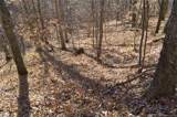 000 Paint Fork Road - Photo 24