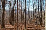 000 Paint Fork Road - Photo 25
