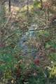 Lot 4 Piney Mountain Church Road - Photo 14