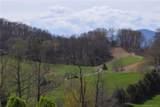 Lot 17 Iron Tree Road - Photo 1