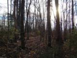 78 Adirondack Lane - Photo 8