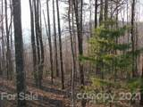 0 Fire Tower Road - Photo 3