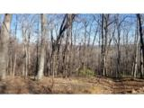 000 White Oak Mountain Road - Photo 1