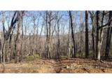 000 White Oak Mountain Road - Photo 2