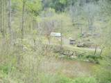 7000 Us 19 Highway - Photo 13
