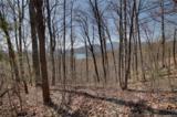 0 Hawks Nest Trail - Photo 2