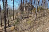 0 Hawks Nest Trail - Photo 3