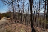 0 Hawks Nest Trail - Photo 4