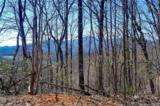 0 Hawks Nest Trail - Photo 5