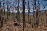 0 Hawks Nest Trail - Photo 6