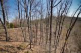 0 Hawks Nest Trail - Photo 7