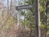00 Blackberry Creek - Photo 2