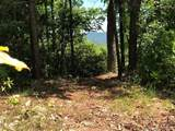 M24 Elk Mountain Trail - Photo 27