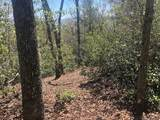 M24 Elk Mountain Trail - Photo 8