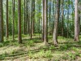 Lot 3 Powder Springs Trail - Photo 3