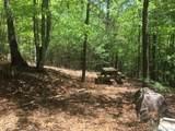 2395 Long Rifle Ridge Road - Photo 5