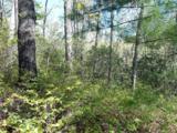14 Woodsong Way - Photo 21