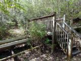 14 Woodsong Way - Photo 28
