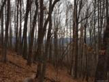 197 & 199 Two Brooks Trail - Photo 11