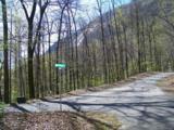 LOT 292 Big Rock Lane - Photo 3