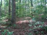TBD Beaverdam Road - Photo 2