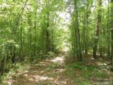 345 Shady Tree Lane - Photo 3