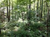 1159 Conley Mountain Association Road - Photo 2