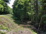 117 Mountain Lily Ridge Road - Photo 13