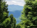 117 Mountain Lily Ridge Road - Photo 15